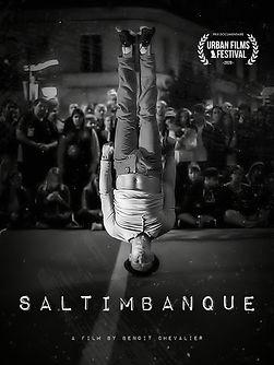 Salt-poster.jpg