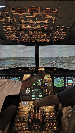person_operating_airplane_at_daytime-sco