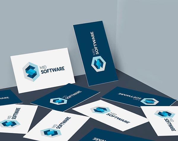 bussinesCarMidSoftware_baja.jpg