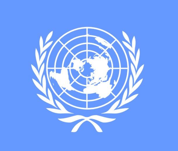 ONU 2019