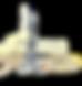 france pasion logo jaune.png
