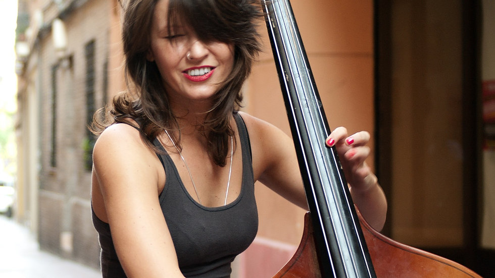 DOUBLE BASS  individual 10 x 30 min lessons - open to all levels