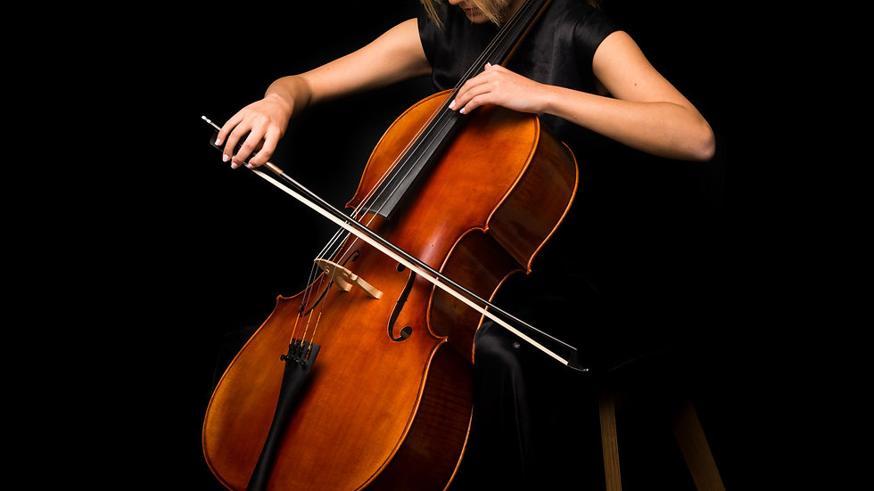 CELLO individual 10 x 30 min lessons - open to all levels