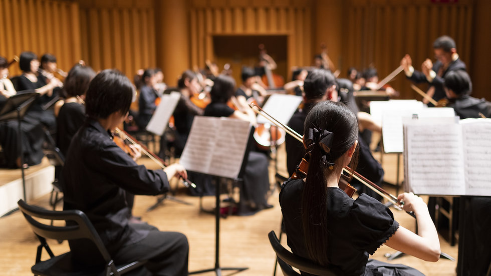 ORCHESTRA 10 x 1 hour lessons