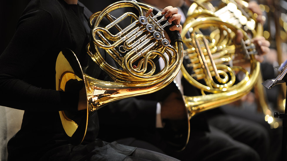 FRENCH HORN individual 10 x 30 min lessons - open to all levels
