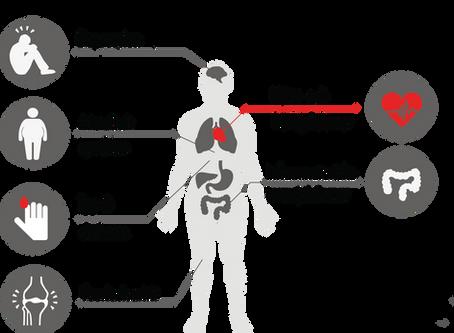 Metabol hälsa - grunden till all hälsa!