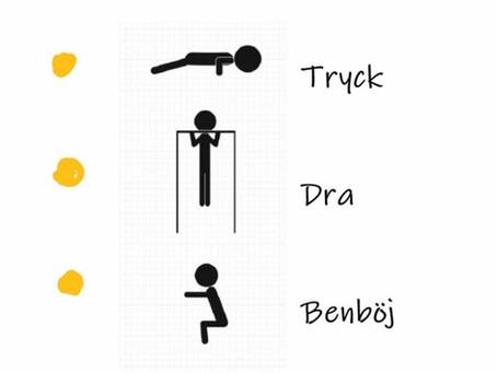 Funktionskraftig träning