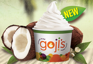 goji's shakes up the frozen yogurt industry by launching cutting edge milk and dairy free choices