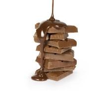 Proyo Chocolate