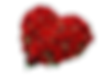 Rose-Bouquet-Transparent.png