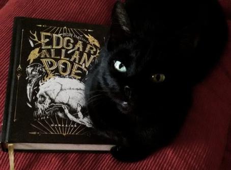 O Gato Preto - Edgar Allan Poe (resenha + análise)