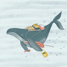 Whale-Sketch.jpg