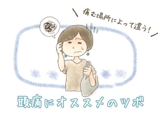 【後編】「おすすめのツボは?」にお答えします☆彡【頭痛😖💥】