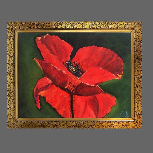 Big poppy 30 x 40 cm