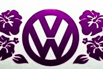 Flores de Hawai con logo VW