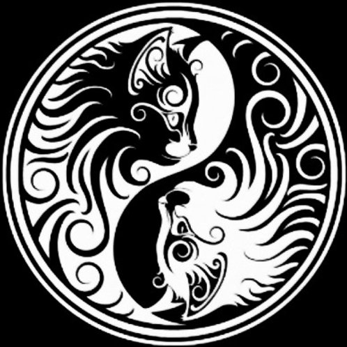 Yin yang gatos