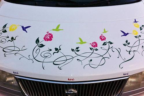 Vid con colibrí