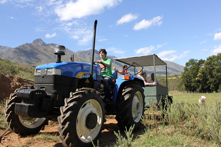 Tractor trip across The Berry Guest Farm