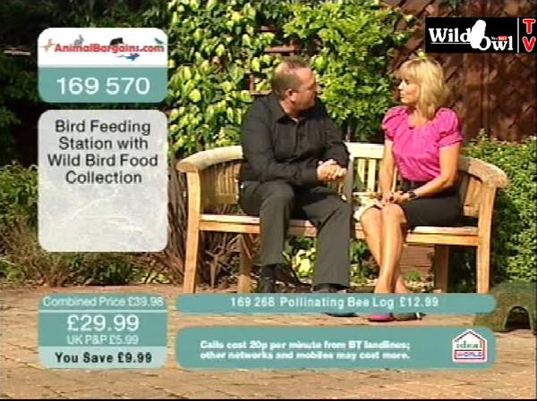 Co-hosting Animal Bargains on Ideal World TV