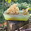Thumbnail: Therapeutic Peppermint Essential Oil Soap With Natural Sea Sponge Organic Hand M