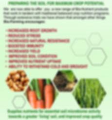 leaflet Front page.jpg