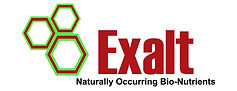 exalt logo.jpg