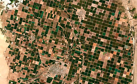 Image satellite of the presence crops an
