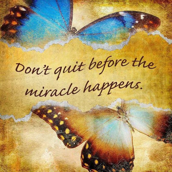 The Year of Miracles