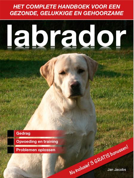 labrador handboek foto