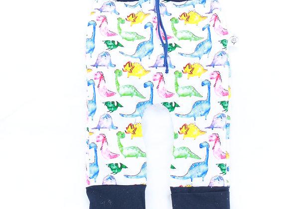 Pantalon évolutif / Dinos colorés