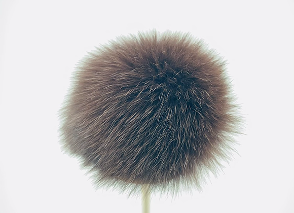 Pompon/ Brun
