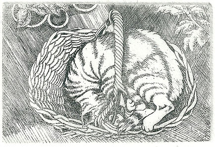 An original etching of a cat called Basil