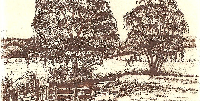 An etching of the North branch of the River Wey at Marelands