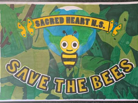 Ms Kerrigan: Bee Project