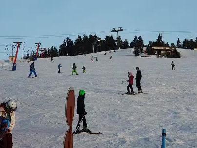 Anyone fancy a bit of skiing??