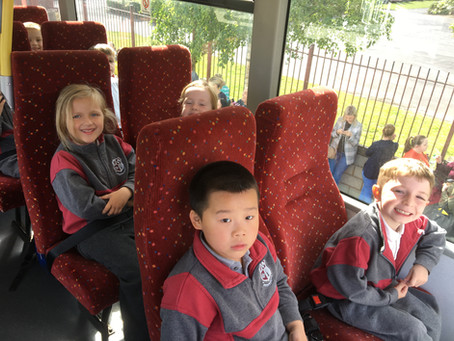 Junior Infants had a great School Tour