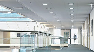 LDI_Commercial Picture.jpg
