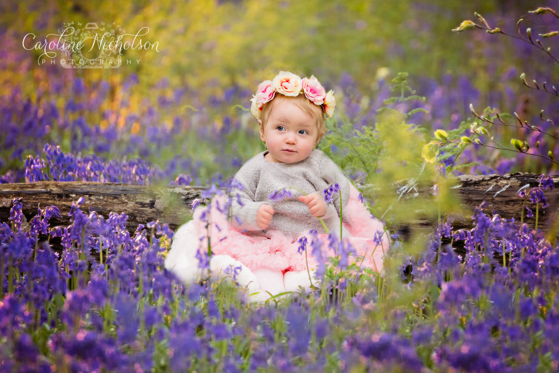 Bluebell Mini's - includes 5 Images!