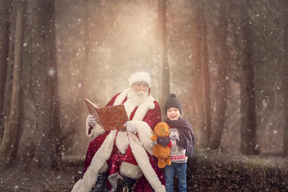 Santa woodland - Theo 2.jpg
