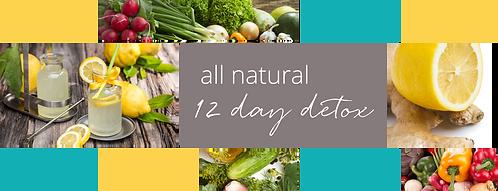 12-Day Detox Program (Digital)
