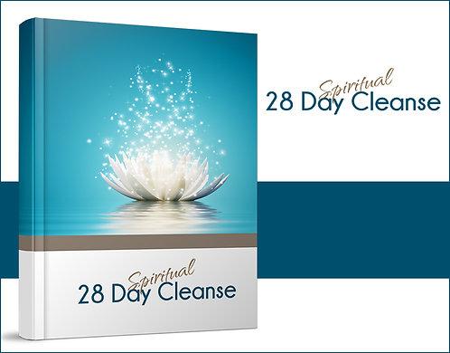 28-Day Spiritual Cleanse (Coaching)