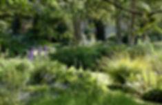 Wix TIMELINE Untitled-5-Edit_edited.jpg