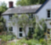 Wix HOME House_foxglove_master-Edit-2_ed
