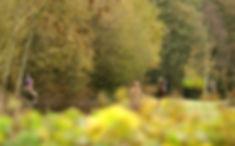 Wix TIMELINE 2010_11_04_2nd_shoot_050-Ed