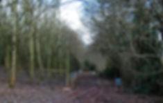 Wix TIMELINE DSC_0483-Edit-2_edited.jpg