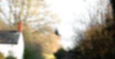 Wix SNARED DSC_0302-Edit-2_edited.jpg