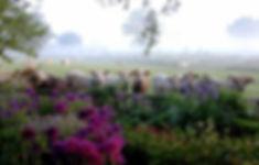 Wix TIMELINE Cows_2-2-Edit-2_edited.jpg