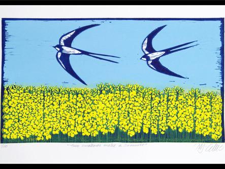 2 Swallows make a summer