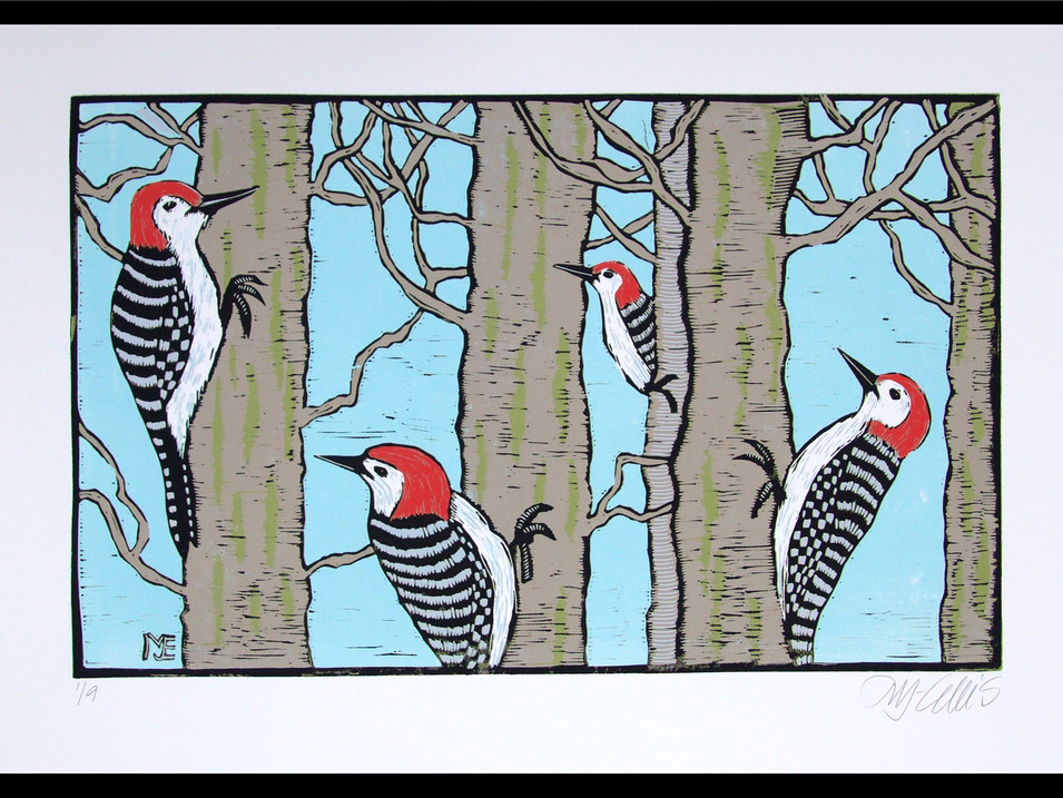 Woodpeckers Forest
