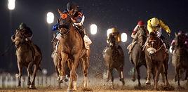 Horse racing_hero1.jpg